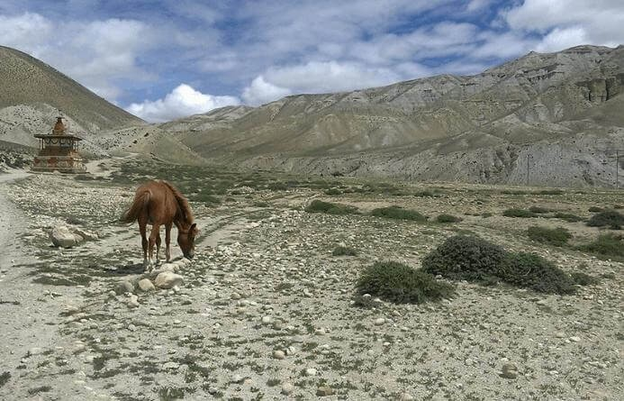 Land view of upper mustang