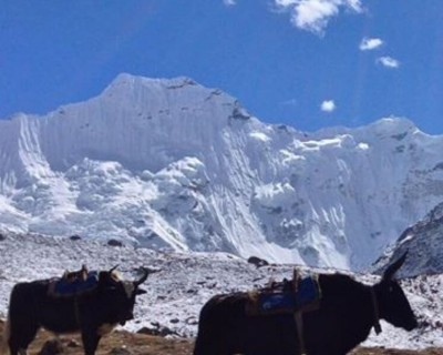 Trekking in Nepal? Learn How to be Safe from Coronavirus!